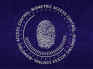 Vimeo Could Have Collected Biometric Data Without Consent